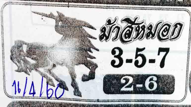 หวยม้าสีหมอก-16460